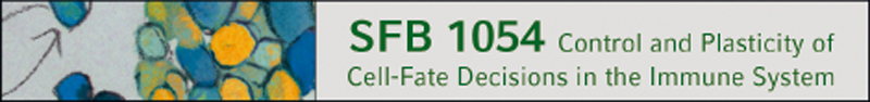 SFB1054
